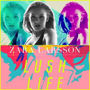 Клип zara larsson lush life (alternate version) скачать.